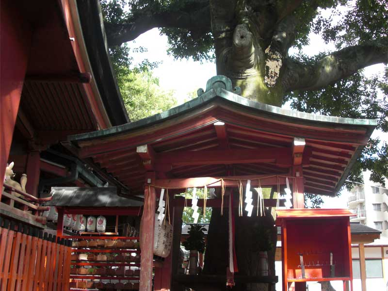 命名・名付け姓名判断武信稲荷神社 宮姫社画像