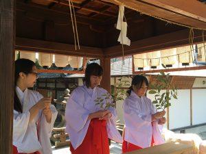 姓名判断 武信稲荷神社巫女体験風景写真4