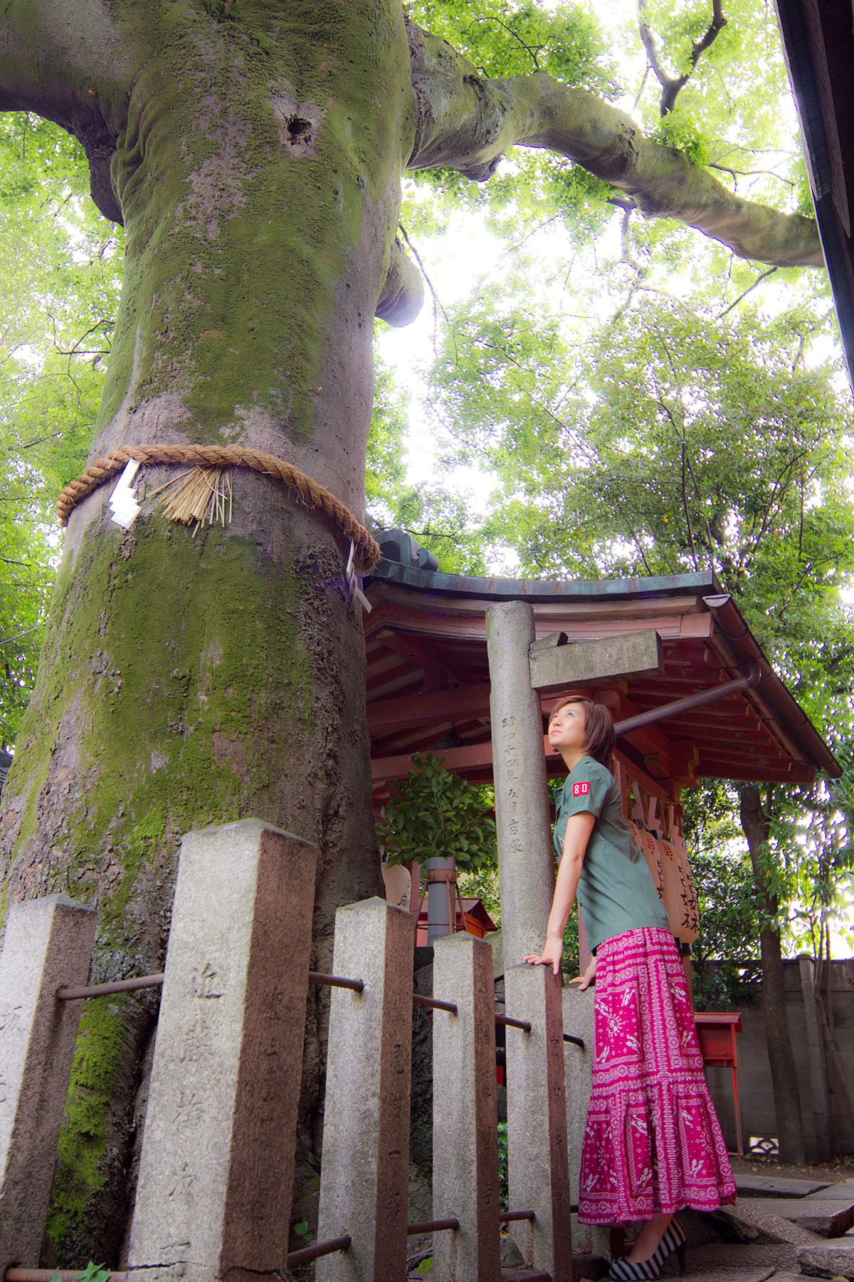 命名姓名判断 武信稲荷神社結婚式写真7